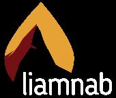 liamnab - Genügsames Crowdlending